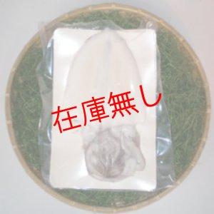 画像1: 生水いか(刺身用)約300g